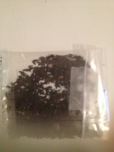 thé noir au pied des pistes du jardin des thés